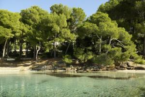 Mallorca_HD-35